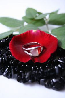 Free Ring, Petal And Beads Royalty Free Stock Photography - 3163337