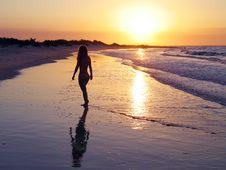 Free Beach Brazilian Girl Royalty Free Stock Image - 3168366