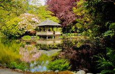 Free Pavilion In Japanese Garden -2 Royalty Free Stock Photos - 3168588