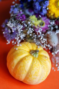 Free Orange Pumpkin Stock Photography - 3168792