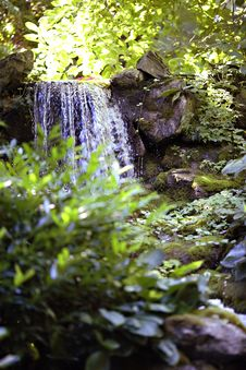 Free Peaceful Waterfall Stock Photography - 3169702