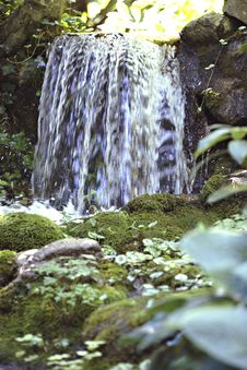 Free Peaceful Waterfall Royalty Free Stock Images - 3169719