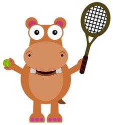 Free Tennis Hippopotamus Royalty Free Stock Image - 31604856