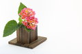 Free Kalanchoe And Wood Block Royalty Free Stock Images - 31614329