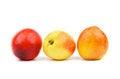 Free Three Nectarines Royalty Free Stock Images - 31618349