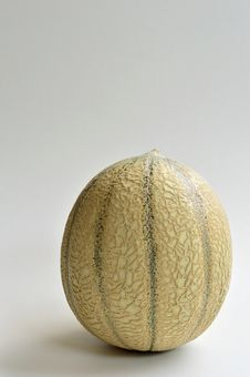 Laced Melon Royalty Free Stock Images