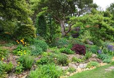 Free Rockery Area In An English Garden Stock Images - 31612154