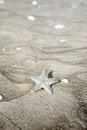 Free Starfish On Sand Stock Photo - 31624240