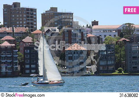 Free Sailing Sydney Harbour Stock Photography - 31638082