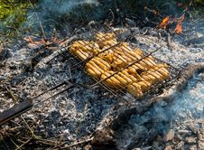 Free Juicy Roasted Kebabs Stock Photography - 31634672
