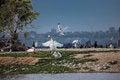Free Territorial War Between Birds Stock Images - 31653154