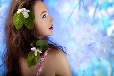 Free Beautiful Glamour Girl With Flowers In Hair Royalty Free Stock Image - 31681446