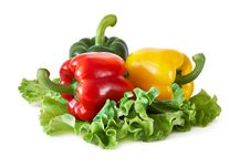 Free Peppers On Lettuce Leaves Stock Photos - 31685733