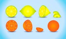 Lemon Orange Citrus Set Royalty Free Stock Photography