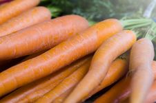 Free Close-up Carrots Royalty Free Stock Images - 31694349