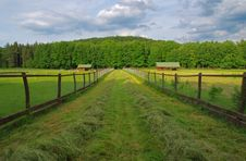 Free Meadow, Fencing, Hut, Path Royalty Free Stock Photography - 31694957