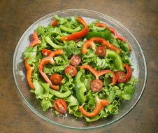 Free Salad On Plate Royalty Free Stock Photos - 31694968