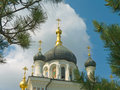 Free Crosses And Domes Of Church Royalty Free Stock Photography - 3170977