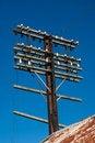 Free Old Utility Pole Royalty Free Stock Photo - 3171485