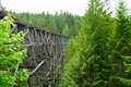 Free Train Trestle Stock Photos - 3173433