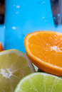 Free Oranges And Lemons Stock Image - 3174621