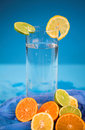 Free Oranges And Lemons Royalty Free Stock Image - 3174636