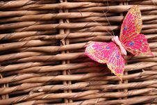 Free Butterfly On Wood Royalty Free Stock Images - 3172109