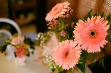 Free Bunch Of Flowers Royalty Free Stock Images - 3173719