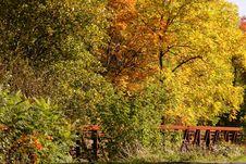 Free Fall Autumn Colors Stock Photo - 3174610