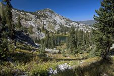 Free Glen In Wasatch Mountains Royalty Free Stock Photography - 3174637