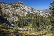 Free Glen In Wasatch Mountains Royalty Free Stock Photos - 3174638