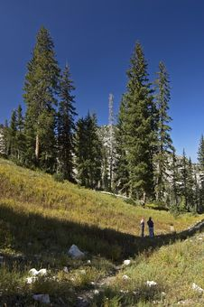 Free Glen In Wasatch Mountains Stock Photography - 3174642