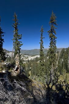 Free Glen In Wasatch Mountains Stock Images - 3174644