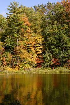 Fall Colors Stock Photos