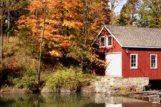 Free Fall Foliage Stock Image - 3174981