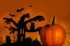 Free Spooky Tree With Pumpkin Royalty Free Stock Image - 3175186