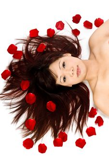 Girl And Rose Petals Stock Image
