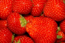Free Ripe Strawberries Stock Images - 3177454