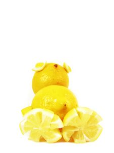 Free Lemons Chicken Royalty Free Stock Photography - 3178887