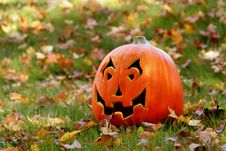 Free Lone Pumpkin Stock Image - 3179821