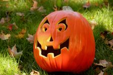 Free Happy Pumpkin Royalty Free Stock Photo - 3179825