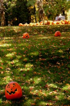 Free Pumpkins Escape Royalty Free Stock Photos - 3179828