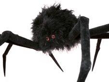 Free Black Spider Toy Stock Photo - 3179940