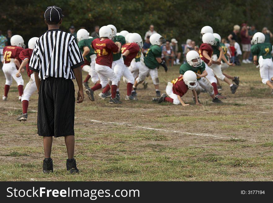 Referee on field