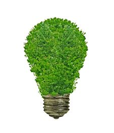 Free Tree Bulb Idea Royalty Free Stock Photos - 31701738