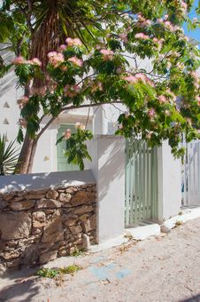 Free Beautifully Flowering Tree Near The House At Island Stock Images - 31705494