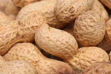 Free Close-up Of Some Peanuts. Background Royalty Free Stock Photography - 31718787