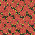 Free Holly Pattern Royalty Free Stock Images - 31724619
