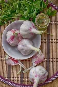 Free Garlic Stock Image - 31729091