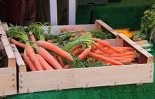 Free Fresh Carrots. Stock Image - 31739211